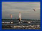 wind surf e kite in adicora